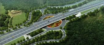 algeria highway